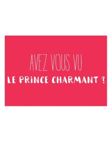 Magnet ISA Prince Charmant - DERRIERE LA PORTE